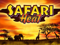 В клубе Фараон Safari Heat